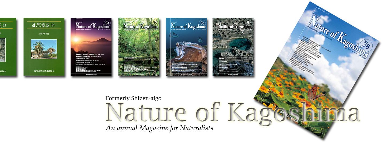 Nature of Kagoshima Online